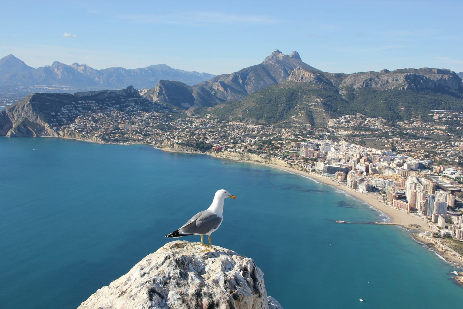 Why should you buy a home and move to the beautiful city of Alicante